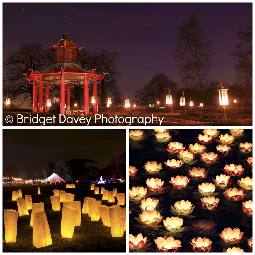 Luminaries Woburnensis at Woburn Abbey